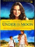 Spanish language film Under the same moon