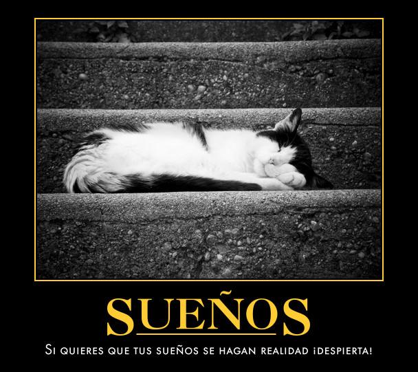inspirational posters spanish notarnyc