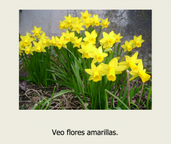 A Spanish ebook about spring with simple sentences for kids.