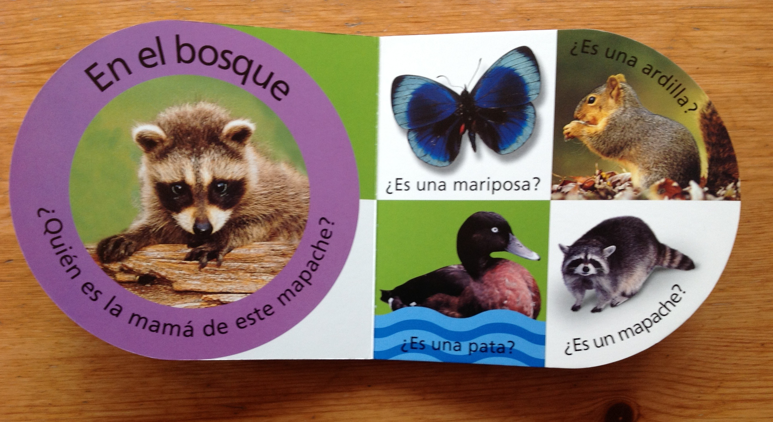 Spanish colors for preschool - Spanish Books For Children Fun Series Teaches Basic Language To Preschoolers