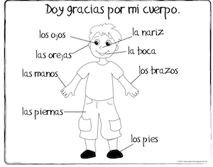 spanish coloring pages body boy