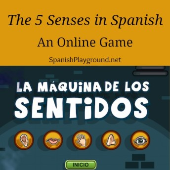 Los cinco sentidos for children learning Spanish.