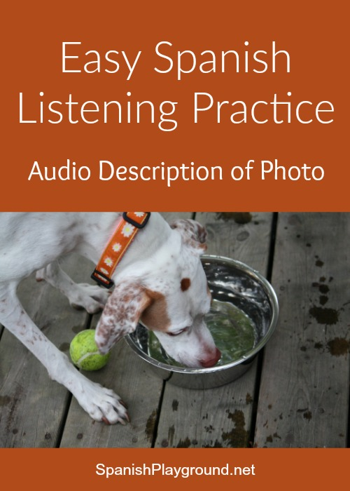 Easy Spanish listening practice with the audio description of the photo of a dog.
