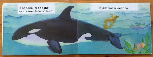 This picture book about caring for the earth is perfect for celebrating Spanish Earth Day units.