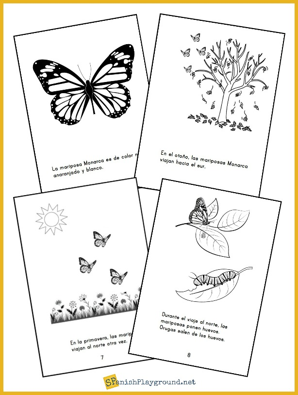 Mini-books like this one in Spanish and English are good Monarch butterfly activities for kids.