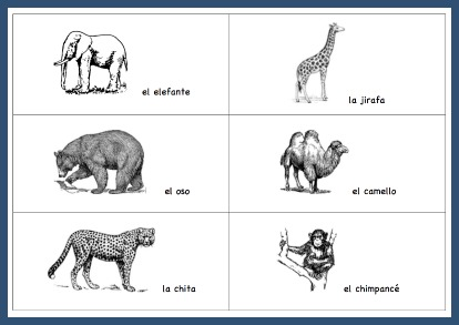 Children learn words for wild animals with these Spanish vocabulary picture cards.