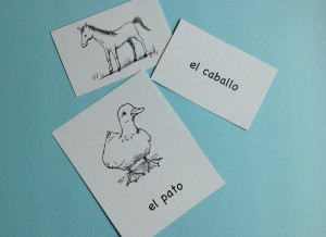 spanish animals picture cards