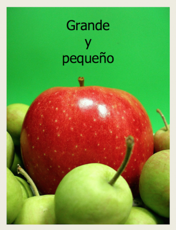 Use this Spanish ebook to talk about size words with kids.