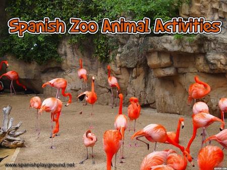 spanish zoo animal activities