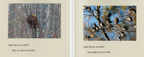 Kids learn about trees in Spanish with this ebook.