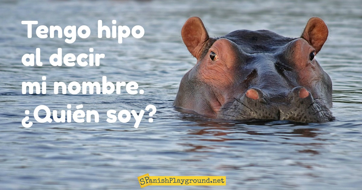 Use Spanish riddles about animals for reading comprehension.