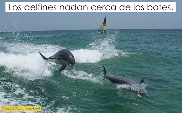 With dolphin activities in Spanish students are introduce to language, culture and geography.