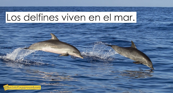 Reading, graphic organizers, videos and photos are dolphin activities in Spanish to use with language learners.
