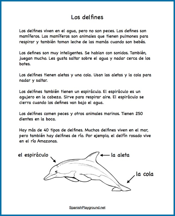 Easy readings are effective dolphin activities in Spanish because they teach new vocabulary in context.