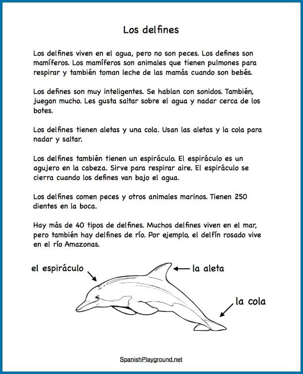 Dolphin Activities In Spanish Spanish Playground