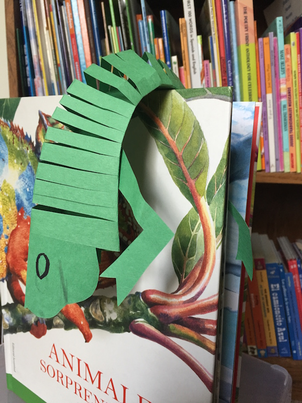 Moveable paper crafts of animals like the iguana and armadillo teach culture as well as language.