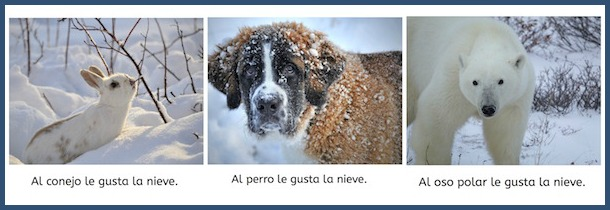 Free Spanish PDF books for kids with controlled language and beautiful photos.