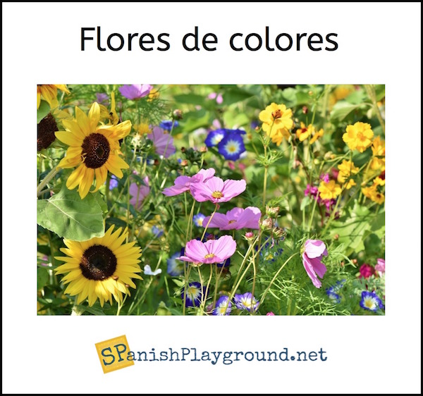 Flowers are a good way to learn Spanish colors.