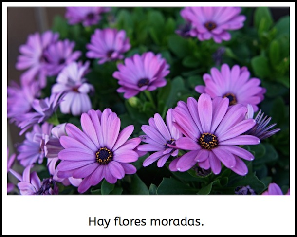 Use this ebook about flowers to learn Spanish colors.