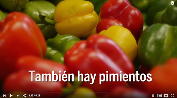 This video introduces kids to Spanish words for vegetables.