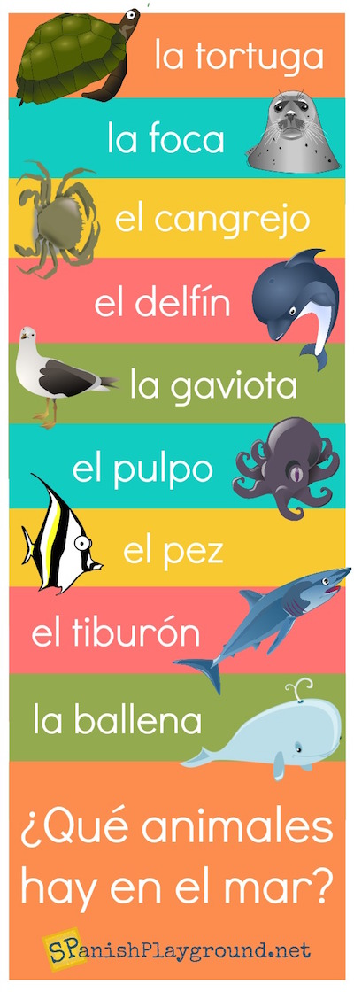 Learn Spanish vocabulary for sea animals with these pictures.