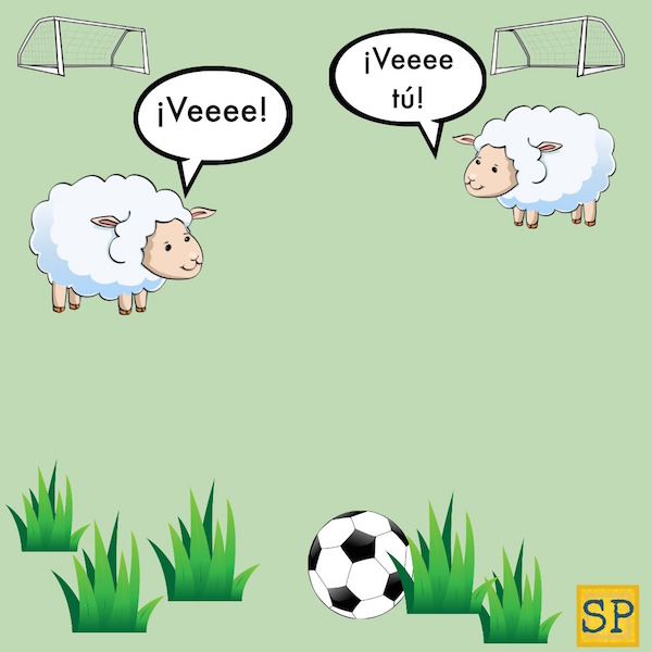 A funny Spanish joke based on the sound a sheep makes, veeee, and the command form of the verb ir.