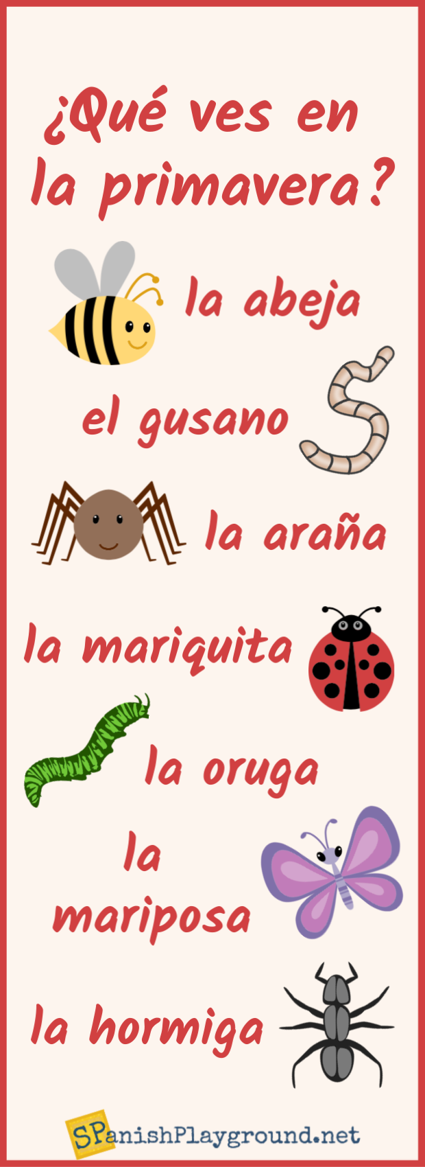 Vocabulary related to insects in Spanish in an infographic for language learners.