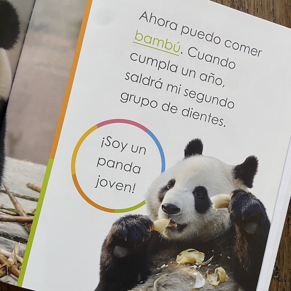 Image showing a page with simple text for language learners from books for kindergartners.