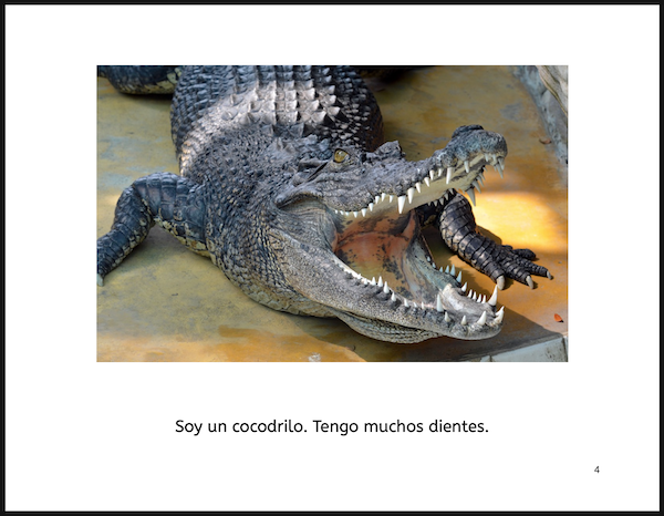 Image of a page from the free Spanish PDF book showing a crocodile and the text on the page with common verb forms.