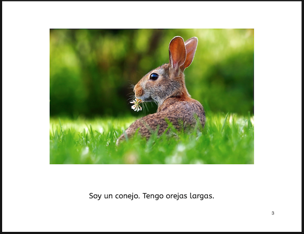 Free Spanish PDF Book: Ser and Tener - Spanish Playground
