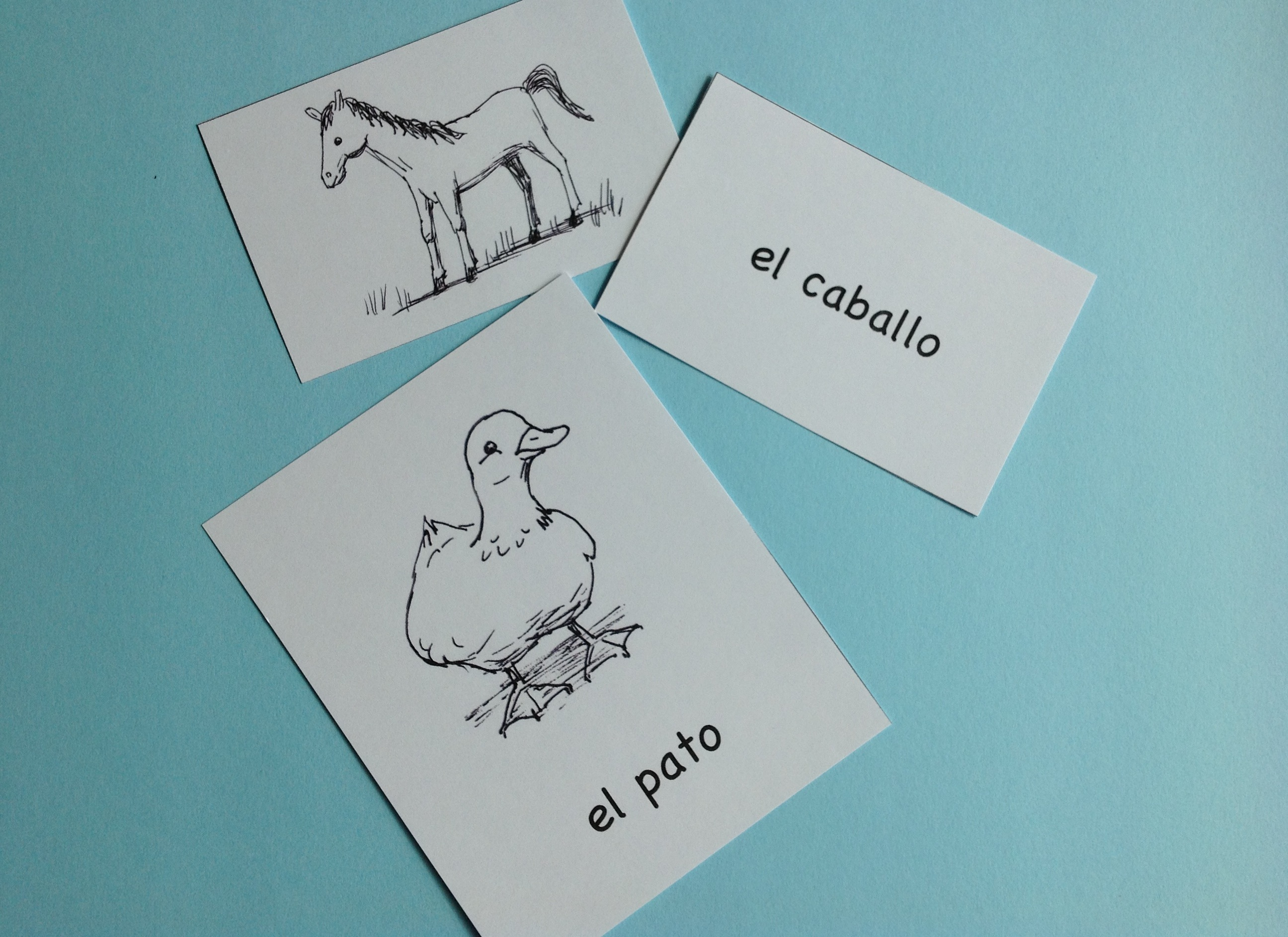 Spanish Animals - Picture Cards and 25 Activities - Spanish Playground